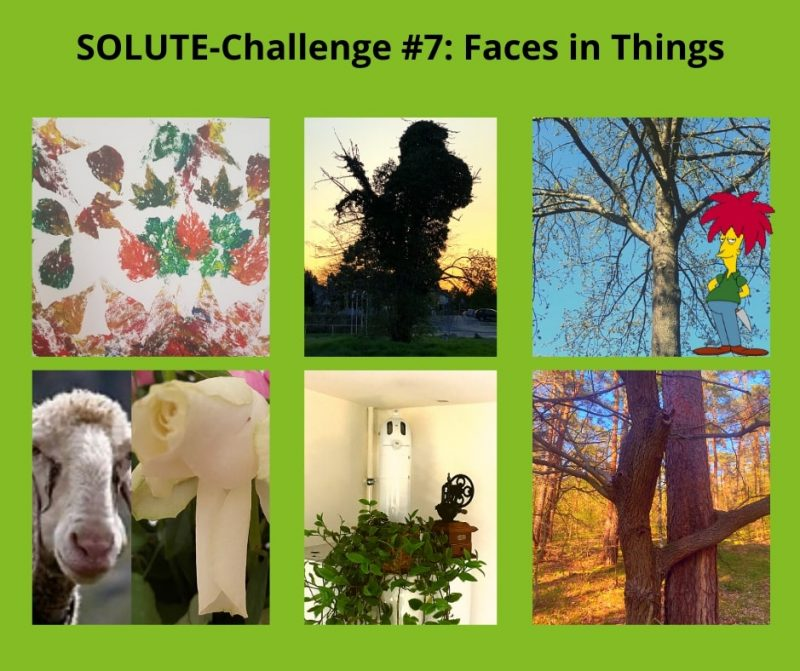 SOLUTE-Challenges Faces in Things